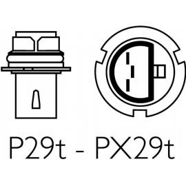 HB1 (9004)